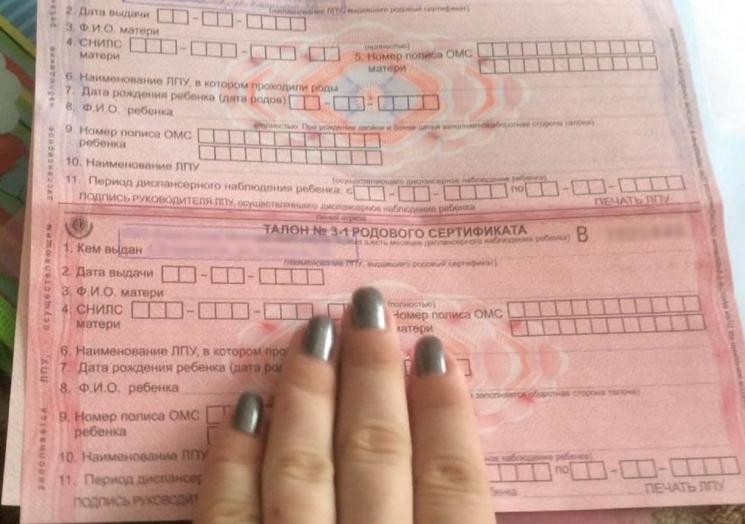 Бланк родового сертификата и его разделы